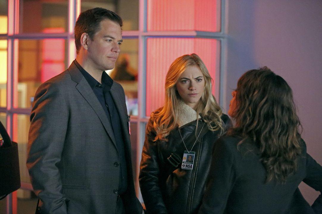 Bei den Ermittlungen im Fall des Terroristen Parsa: Ellie (Emily Wickersham, M.) und Tony (Michael Weatherly, l.) ... - Bildquelle: CBS Television