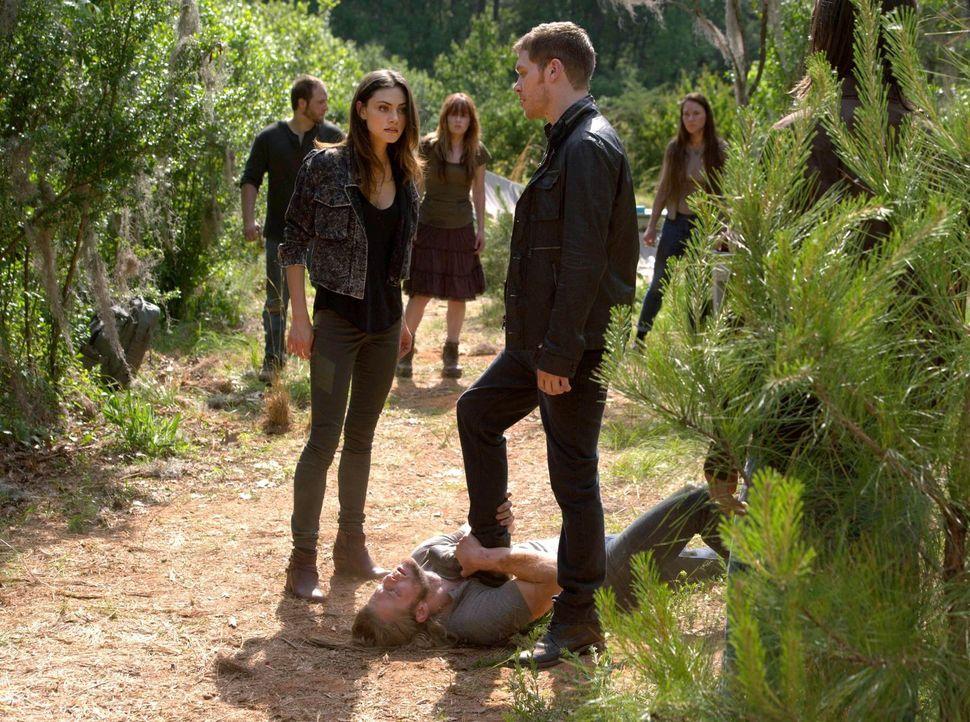 Während Hayley (Phoebe Tonkin, l.) versucht, Oliver (Chase Coleman, liegend) und den Rest ihres Rudels von ihren Führungsqualitäten zu überzeugen, w... - Bildquelle: Warner Bros. Television