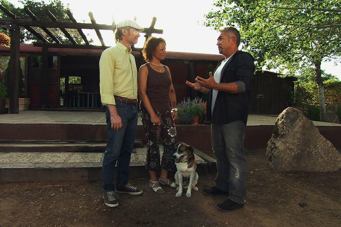 Sind Renato Comacchio (l.) und Karin (M.) die richtigen Besitzer für Brigadiere? Cesar (r.) testet die Anwärter ganz genau ... - Bildquelle: Belén Ruiz Lanzas 360 Powwow, LLC / Belén Ruiz Lanzas