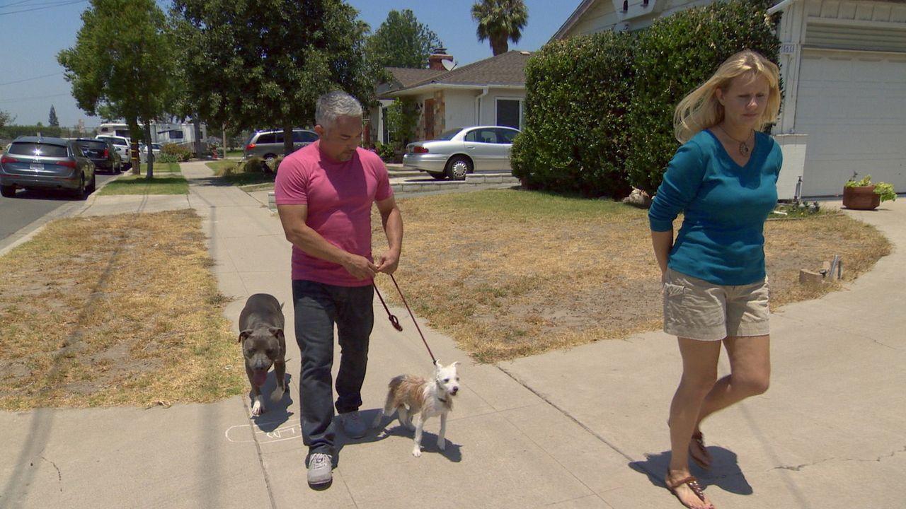 Karen (r.) und ihre Familie stehen vor einem großen Problem: Ihr Hund Toby sorgt für Stress in der Nachbarschaft, aber sollten sie den Hund weggeben... - Bildquelle: National Geographic Channels