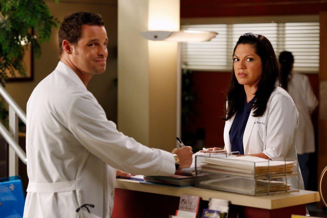Während Jackson von einer schockierenden Neuigkeit, die April ihm eröffnet, überrascht wird, unterstützen Callie (Sara Ramirez, r.) und Alex (Justin... - Bildquelle: ABC Studios