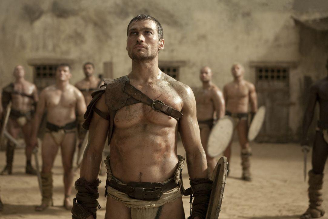 Wird ausgewählt, gegen den schier unbesiegbaren Theokoles anzutreten: Spartacus (Andy Whitfield) ... - Bildquelle: 2010 Starz Entertainment, LLC