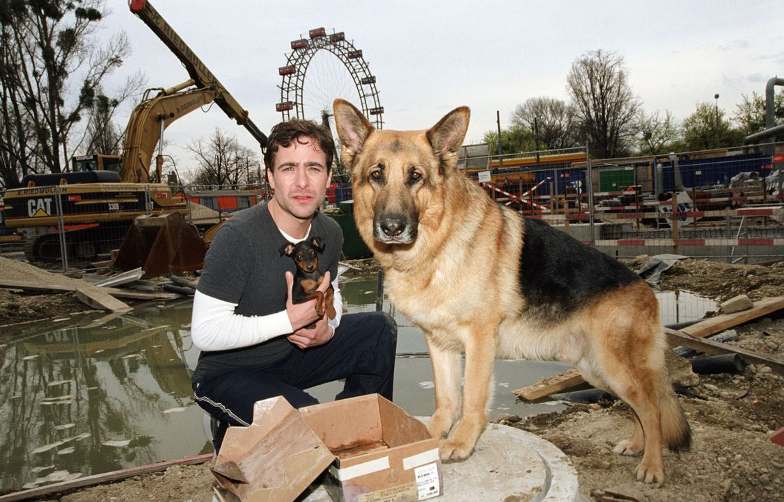 Marc (Alexander Pschill) und sein Gefährte Rex finden in einer Baugrube einen Welpen. - Bildquelle: Ali Schafler Sat.1