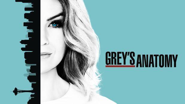 Grey's Anatomy - (13. Staffel) - Neues aus dem Leben von Meredith Grey (Ellen...