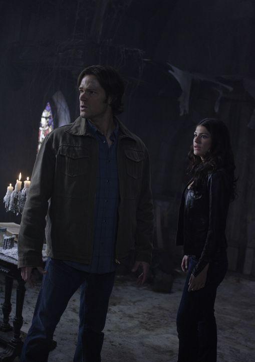 Die Geisterjäger kämpfen getrennt, denn Dean wird von Castiel und Zachariah entführt und erhält seine Chance, Luzifer aufzuhalten. Sam (Jared Padale... - Bildquelle: Warner Bros. Television