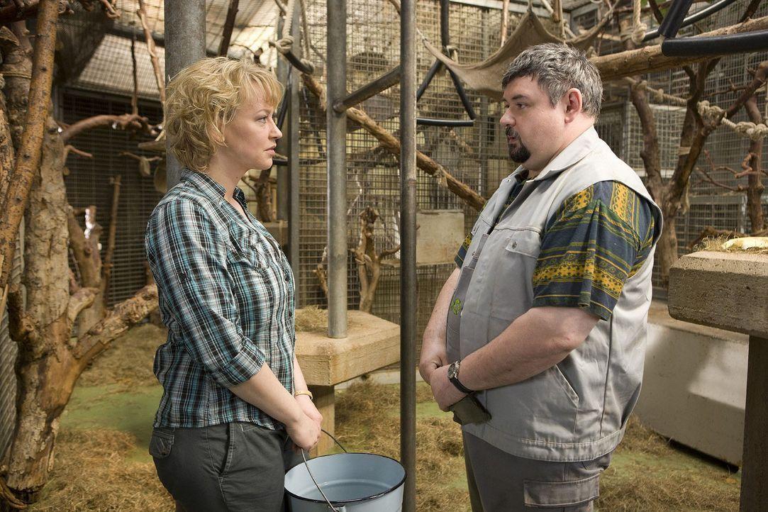 Peter (Thomas Gimbel, r.) beichtet Sonja (Floriane Daniel, l.), dass er an den Katastrophen im Zoo schuld ist und wer ihn dazu angestiftet hat. Doch... - Bildquelle: Sat.1
