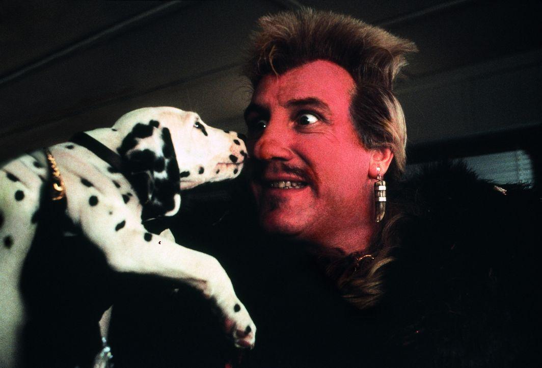 Der französische Pelz-Designer Jean-Pierre LePelt (Gérard Depardieu) ist auf der Suche nach hübschen Welpen für den ultimativen Dalmatiner-Pelzm... - Bildquelle: Walt Disney Pictures