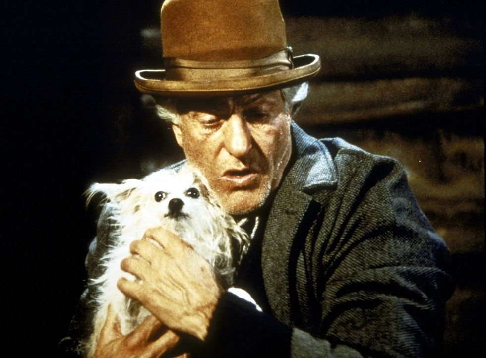 Wally (Dick Van Dyke) mit seinem Hündchen Long John Silver. - Bildquelle: Worldvision Enterprises, Inc.