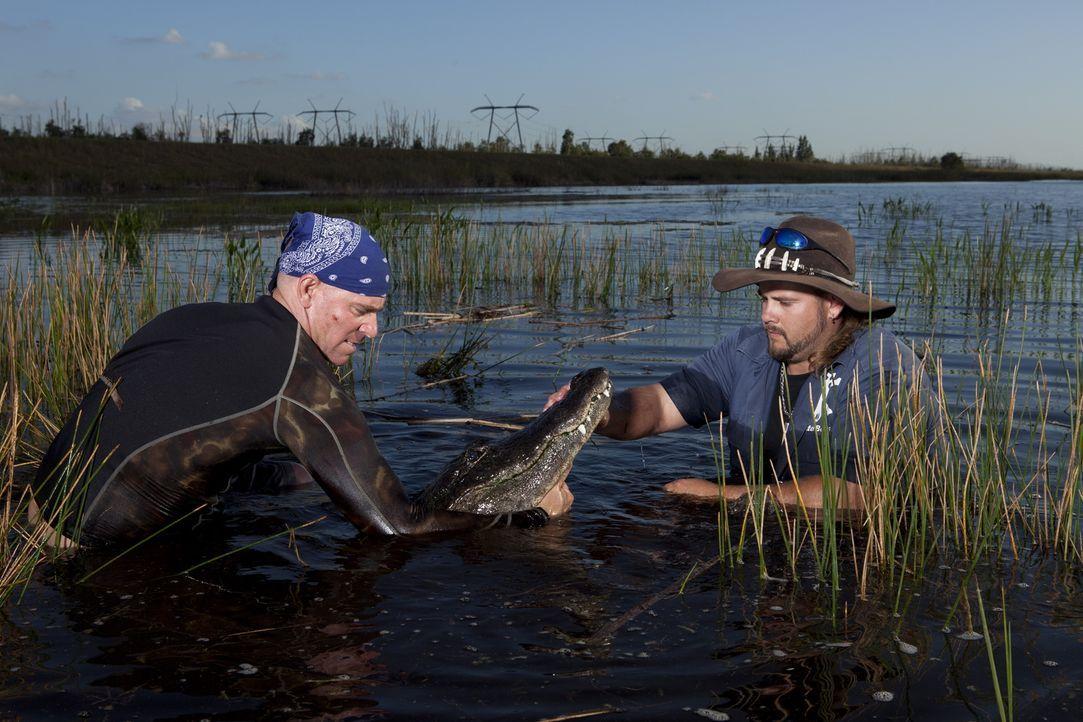 (1. Staffel) - Sind ganz besondere Typen - die Gator Boys: Paul Bedard (l.) und Jimmy Riffle (r.) ... - Bildquelle: Bob Croslin 2011 Discovery Communications