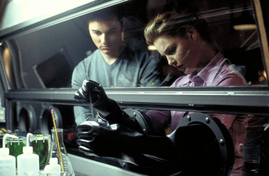 Für eine bessere Welt basteln die politisch engagierten College-Studenten Bobby (Kerr Smith, l.) und Aizy (Katherine Heigl, r.) eine Atombombe zusa... - Bildquelle: 2003 NBC, Inc. All rights reserved.