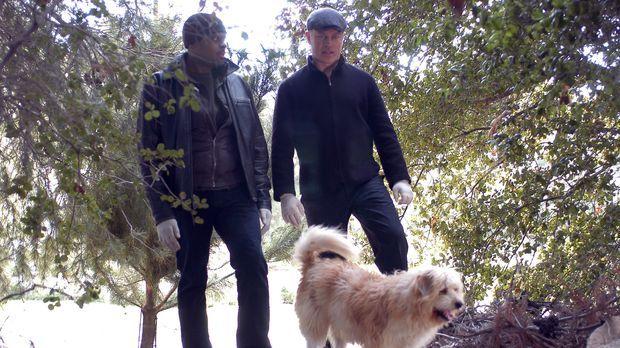 Bei ihren Nachforschungen, werden Connor (Neal McDonough,r.) und Powell (Troy...