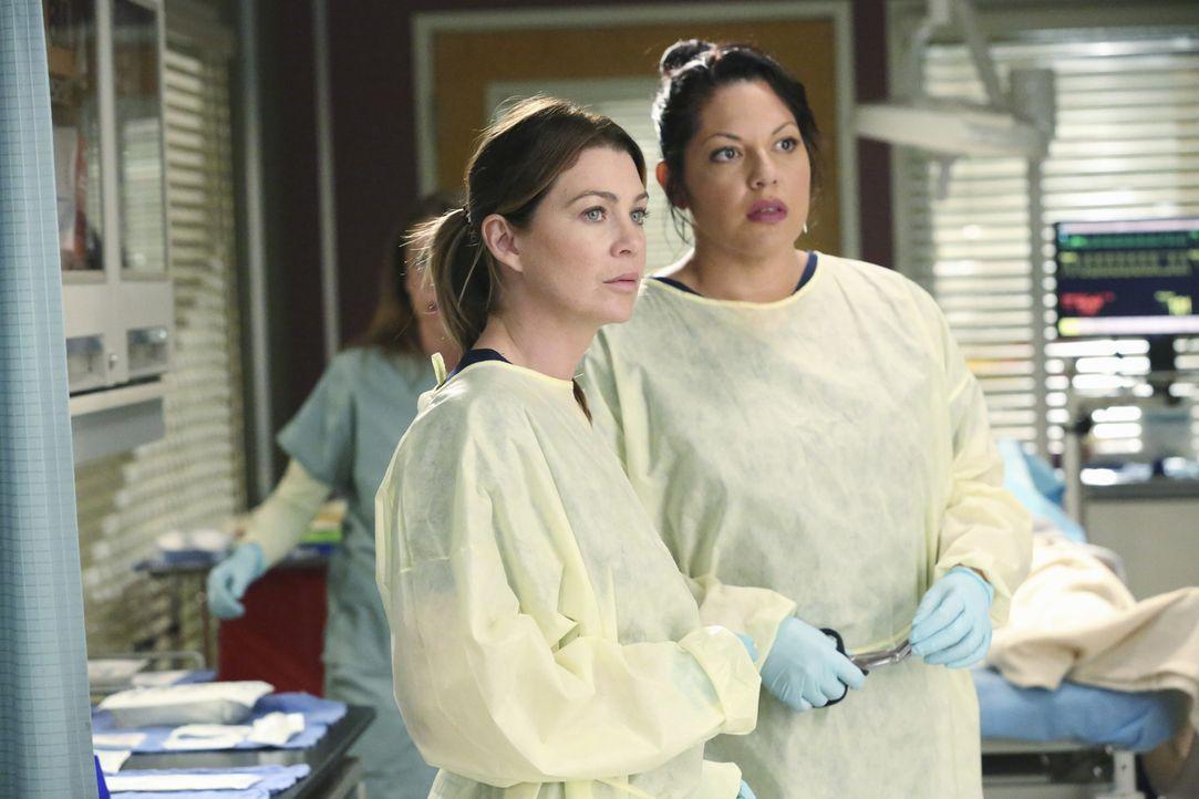 Können ihre privaten Probleme auch im Job nicht vergessen: Meredith (Ellen Pompeo, l.) und Callie (Sara Ramirez, r.) ... - Bildquelle: ABC Studios