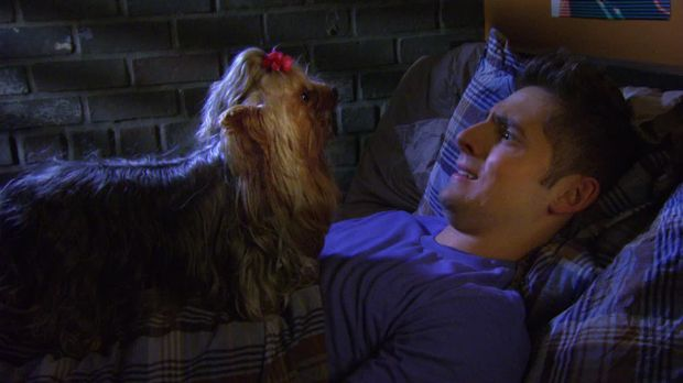 Baby Daddy - Baby Daddy - Staffel 2 Episode 11: Auf Den Hund Gekommen