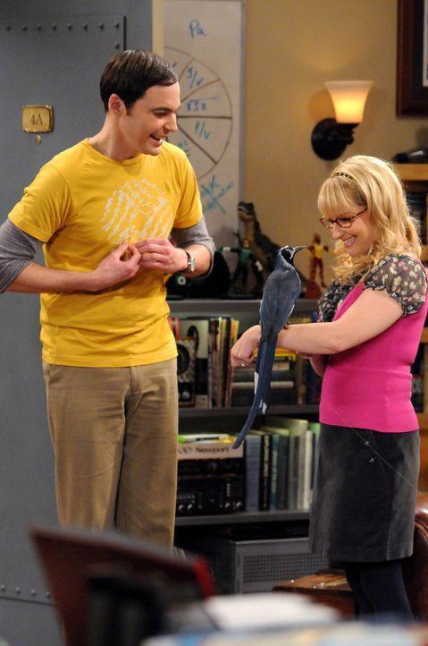 Zwei komische Vögle: Sheldon (Jim Parsons, l.) und Bernadette (Melissa Rauch, r.) ... - Bildquelle: Warner Bros. Television