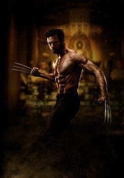 Wolverine: Weg des Kriegers - WOLVERINE: WEG DES KRIEGERS - Artwork - Bildque...