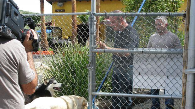 Heute kümmert sich Cesar (r.) mal nicht um Hunde, sondern um Menschen, die pa...