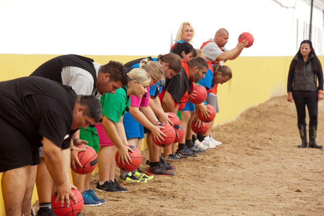 Auf die Plätze, fertig, los: Wer kann am längsten den schweren Ball in die Höhe halten? - Bildquelle: Enrique Cano SAT.1