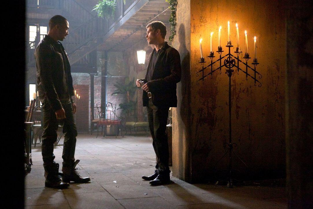 Marcel (Charles Davis, l.) weiß, was sich Klaus (Joseph Morgan, r.) am sehnlichsten wünscht. Wird er ihm die Illusion von Loyalität geben können? - Bildquelle: Warner Bros. Television