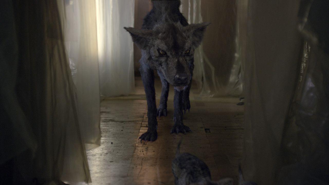 Ein Hyaenodon versetzt die Anwohner eines herrschaftlichen Anwesens in große Furcht ... - Bildquelle: ITV Plc