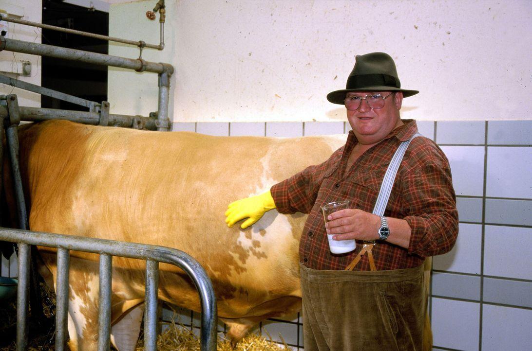 Bauer Huber (Horst Krause) ist nicht besonders glücklich über seinen neuen Stier ... - Bildquelle: Hardy Spitz Sat.1