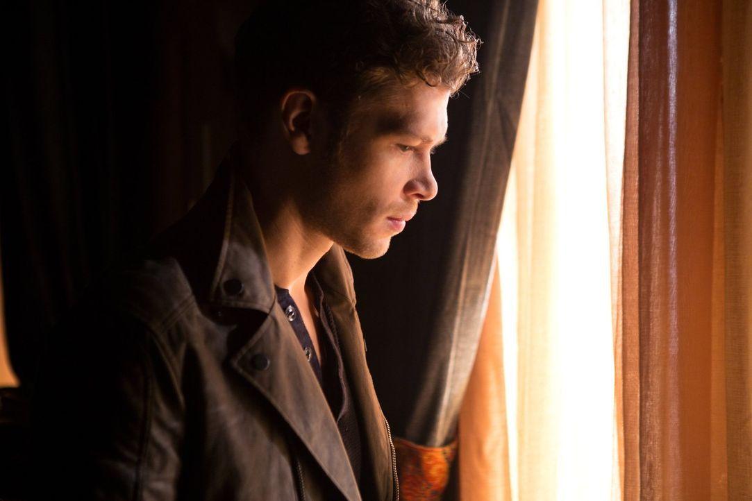 Während Klaus (Joseph Morgan) den Krieg ausruft, geraten Hayley und Jack in die Hände der Feinde ... - Bildquelle: Warner Bros. Entertainment, Inc.
