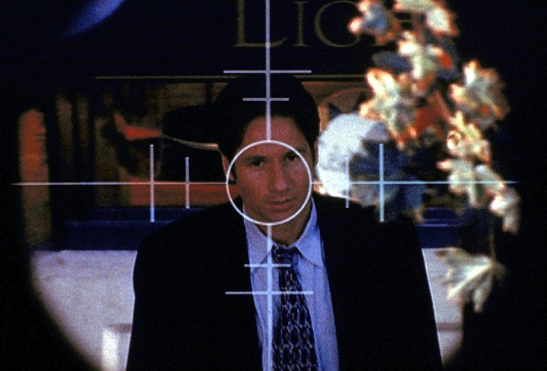 Nachdem Mulder (David Duchovny) ein Komplott der Regierung aufgedeckt hat, befindet er sich schon bald im Fadenkreuz eines Attentäters. - Bildquelle: TM +   2000 Twentieth Century Fox Film Corporation. All Rights Reserved.