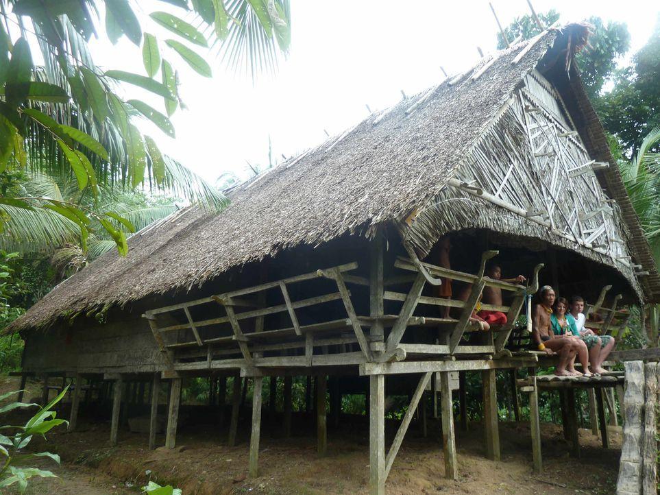 Zwei rebellische Teenager sollen bei den Mentawai-Indianern auf Siberut Island tief im Indonesischen Dschungel und fernab der Zivilisation zur Vernu... - Bildquelle: SAT.1
