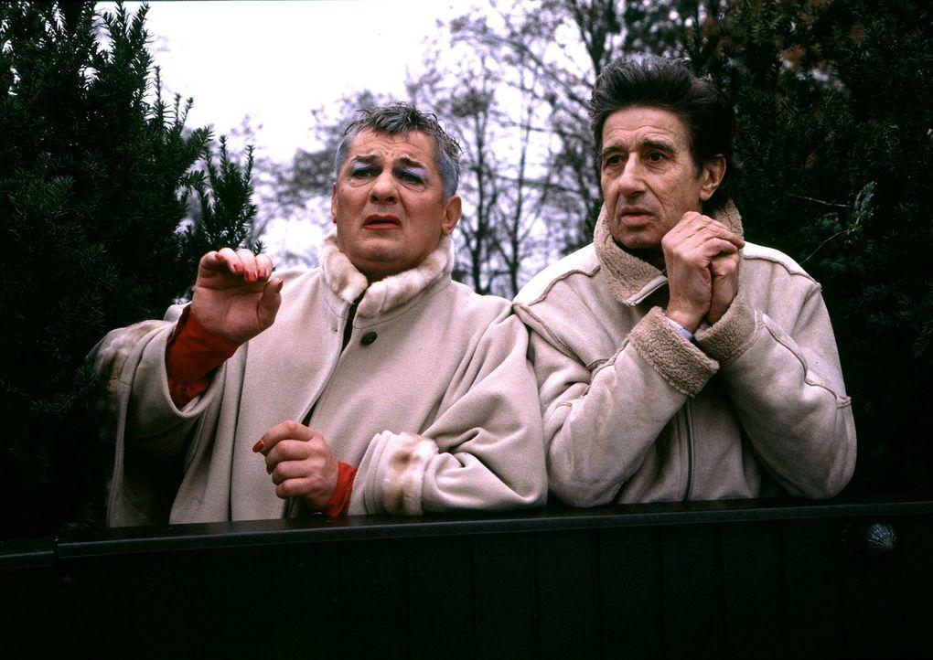 Nach 35 Jahren müssen Laila (Heinz Hoenig, l.) und Harry (Rolf Zacher, r.) erleben, dass ihr geliebter Ziehsohn Ferdinand bei ihnen auszieht, um end... - Bildquelle: ProSieben ProSieben