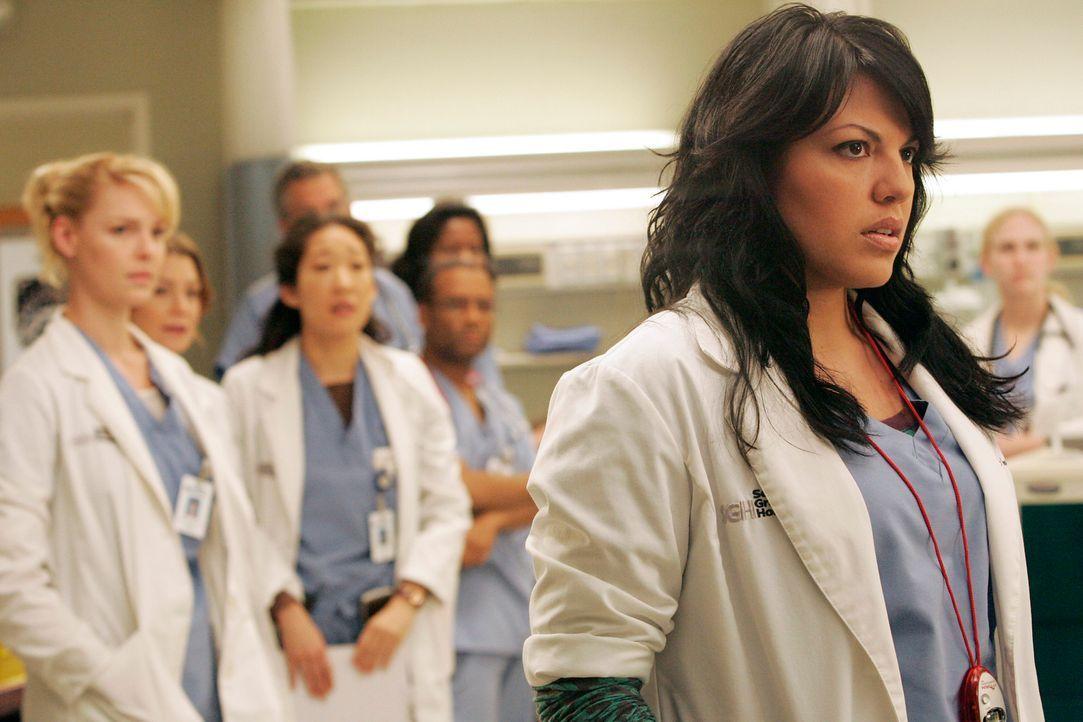 Im Krankenhaus steht eine Triage-Übung an und Izzie (Katherine Heigl, l.), Meredith (Ellen Pompeo, 2.v.l.), Cristina (Sandra Oh, 3.v.l.) und Callie... - Bildquelle: Touchstone Television