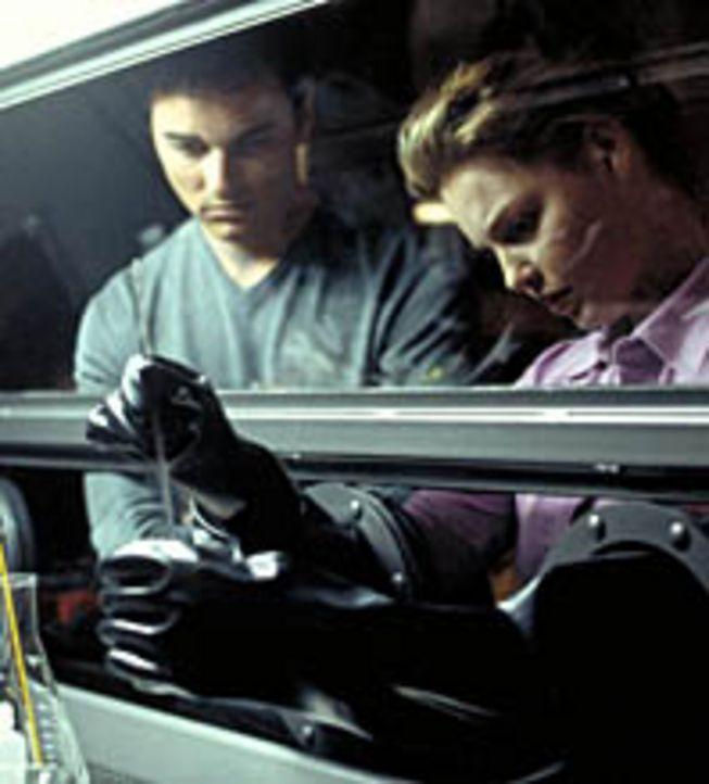 Wollen den Regierungen dieser Welt auf die Sprünge helfen: die College-Studenten Bobby (Kerr Smith, l.) und Aizy (Katherine Heigl, r.) ... - Bildquelle: 2003 NBC, Inc. All rights reserved.