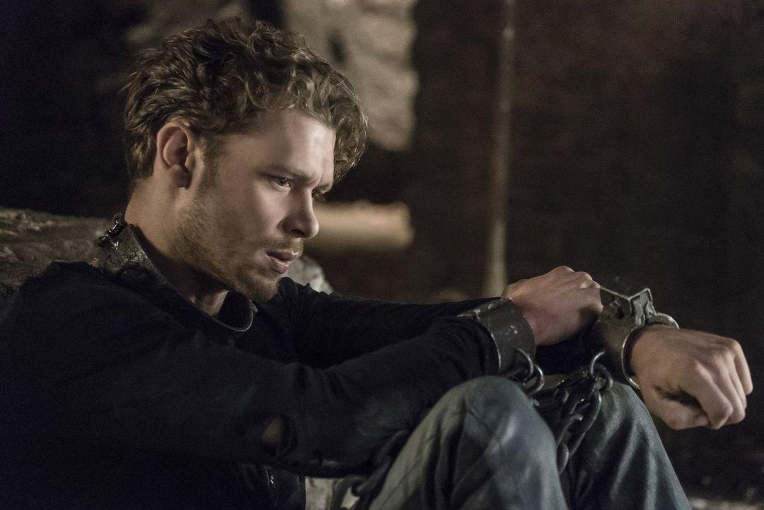 Während seine Familie sich auf den Weg macht, um Klaus (Joseph Morgan) zu befreien, suchen Vincent und Maxine verzweifelt nach dem verschwundenen ju... - Bildquelle: 2016 Warner Brothers