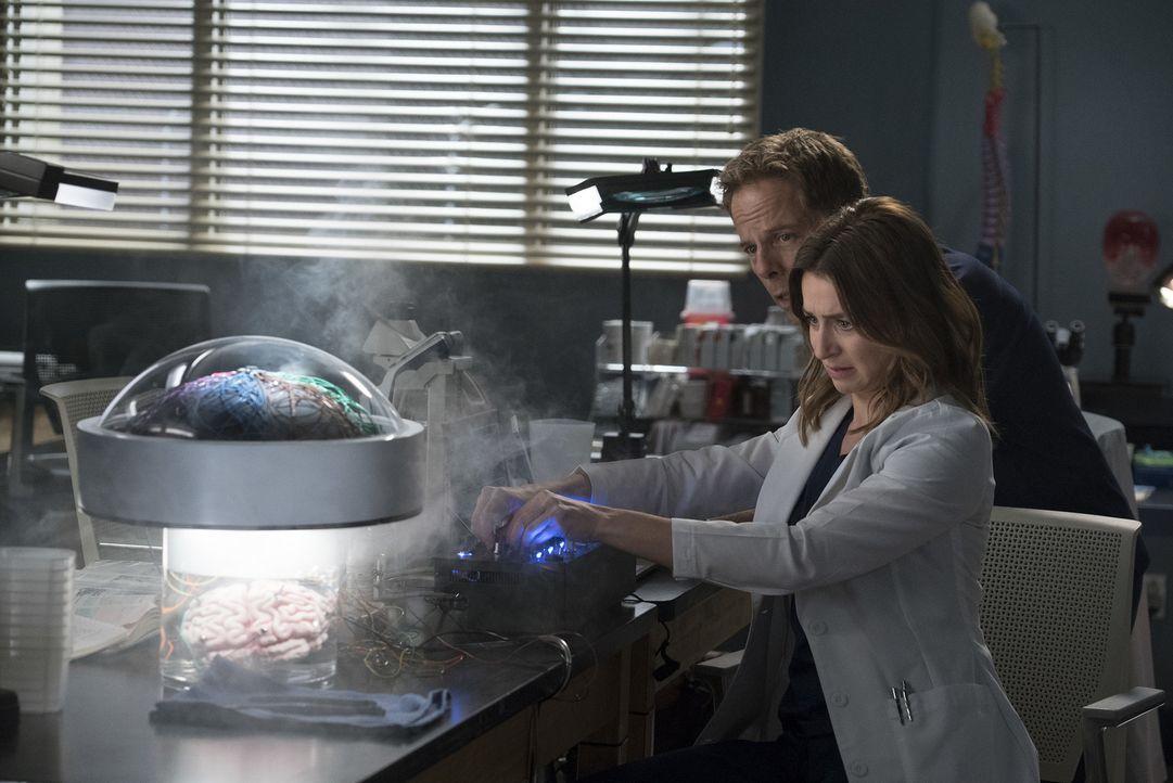 Dr. Thomas Koracik (Greg Germann, l.); Dr. Amelia Shepherd (Caterina Scorsone, r.) - Bildquelle: Eric McCandless ABC Studios/Eric McCandless