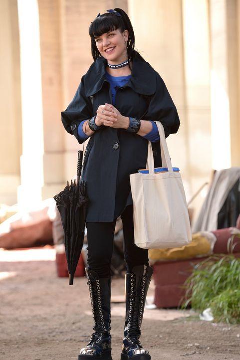 Hat ein großes Herz und engagiert sich auch außerhalb der Dienstzeit: Abby Sciuto (Pauley Perrette) ... - Bildquelle: CBS Television