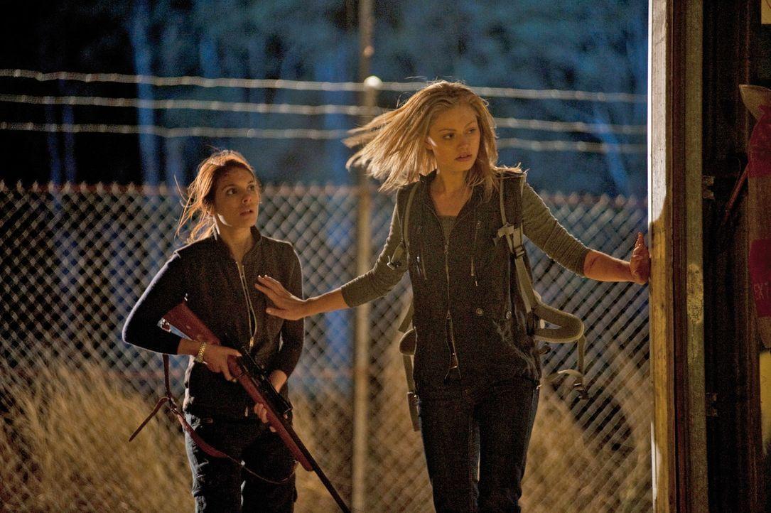 Ellie (Caitlin Stasey, l.) und Fiona (Phoebe Tonkin, r.) und die anderen Freunde beschließen, um ihre Freiheit zu kämpfen. Auch wenn es ihr Leben ko... - Bildquelle: Splendid Film