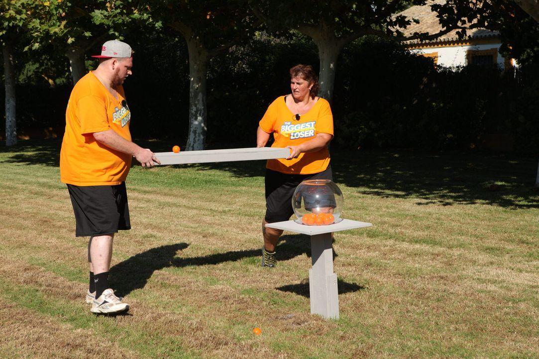 Daniel (vorne) und Michaela (hinten) müssen bei der zweiten Challenge antreten: Es gilt, einen Ball auf einem Brett zu balancieren, um diesen schlie... - Bildquelle: SAT.1/Enrique Cano