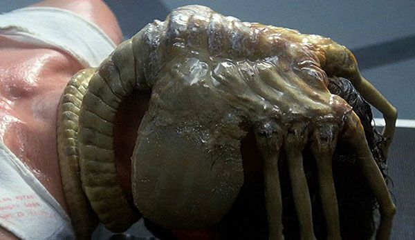 """Platz 2: Aliens aus Alien - Bildquelle: """"Alien Anthology"""": auf Blu-ray erhältlich (20th Century Fox)"""