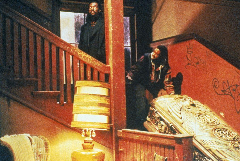 Beim Umzug vom Bermuda-Dreieck nach Brooklyn überträgt Maximillian (Eddie Murphy, l.) Julius (Kadeem Hardison, r.) eine eminent wichtige Aufgabe:... - Bildquelle: Paramount Pictures