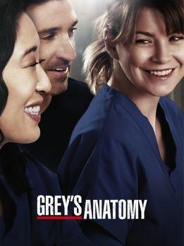 Grey's Anatomy - (10. Staffel) - Grey's Anatomy: Neues aus dem Seattle Grace...