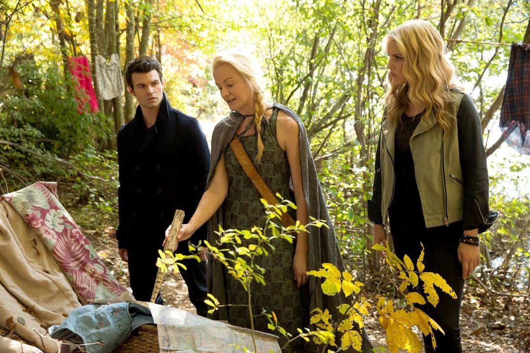 Können Elijah (Daniel Gillies, l.) und Rebekah (Claire Holt, r.) der Werwölfin Eve (Tasha Ames, M.) helfen? - Bildquelle: Warner Bros. Television
