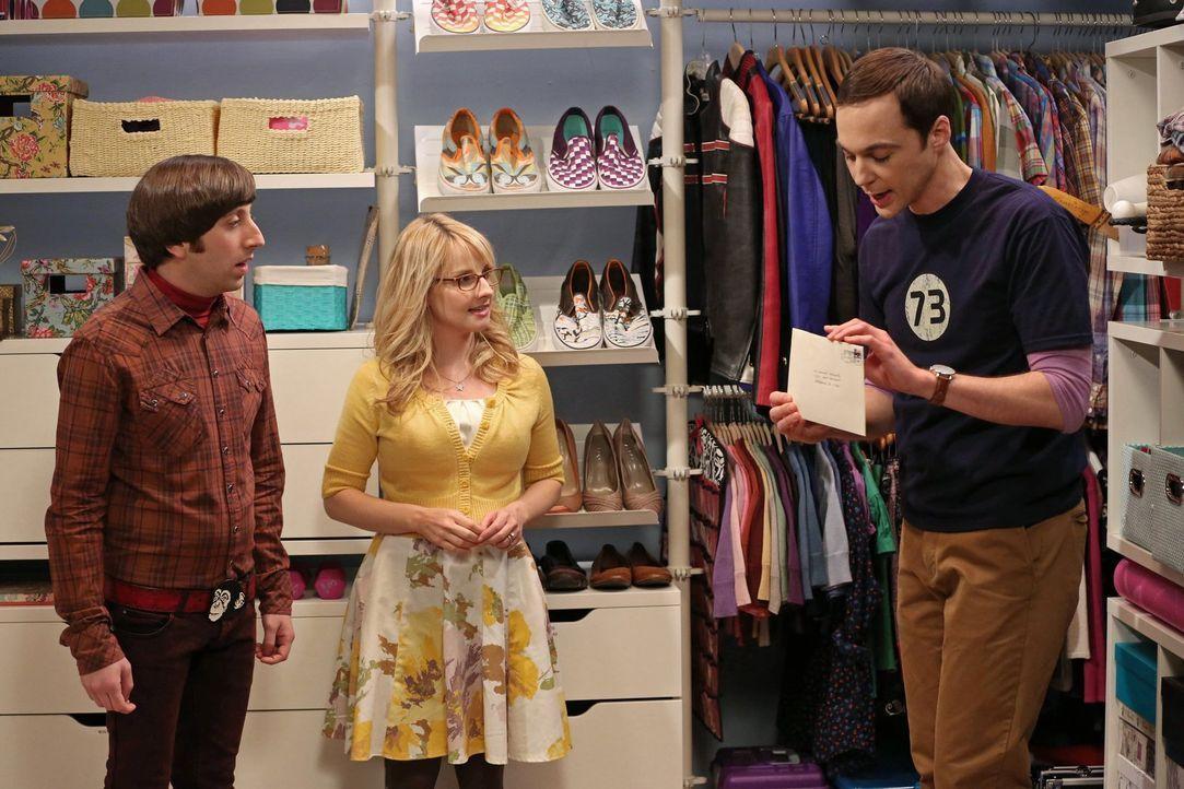 Während Bernadette (Melissa Rauch, M.) und Howard (Simon Helberg, l.) eine Dinner-Party für ihre Freunde geben, sortiert Sheldon (Jim Parsons, r.) w... - Bildquelle: Warner Bros. Television