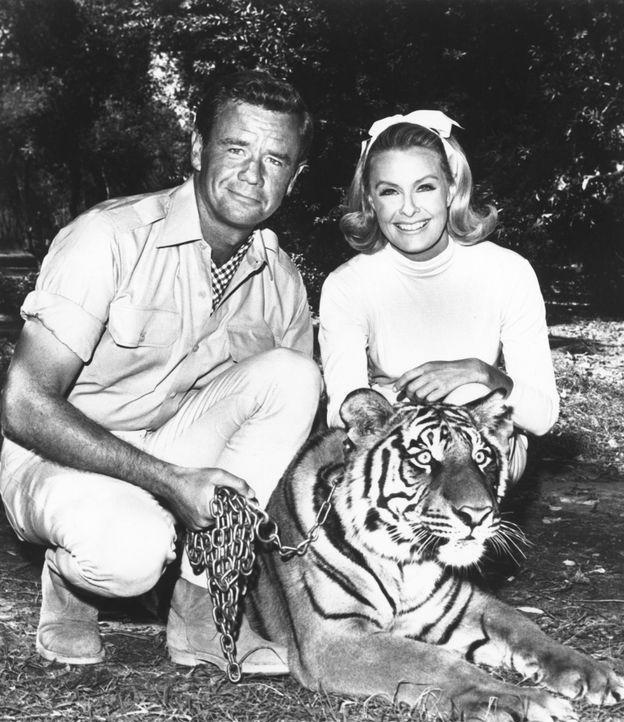 Tierarzt Dr. Marsh Tracy (Marshall Thompson, l.) betreibt zusammen mit seiner Tochter Paula (Cheryl Miller, r.) im afrikanischen Busch eine Station... - Bildquelle: 2007 Warner Bros. All Rights Reserved.