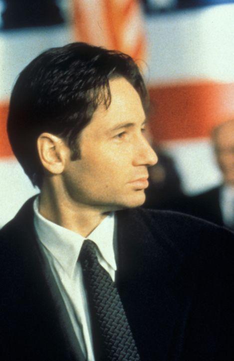 (4. Staffel) - Die X-Akten: Hier werden Fälle gesammelt, in denen ungewöhnliche Phänomene eine Rolle spielen, die nicht erklärt werden können. FBI-A... - Bildquelle: TM +   Twentieth Century Fox Film Corporation. All Rights Reserved.