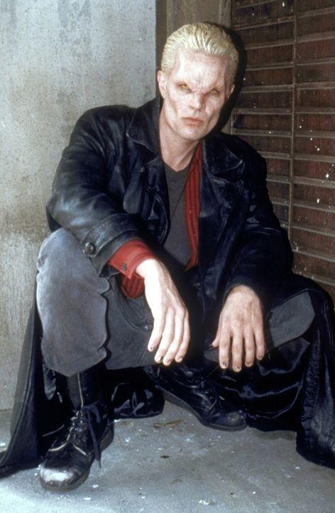 Spike (James Marsters) führt wieder nichts Gutes im Schilde. - Bildquelle: TM +   2000 Twentieth Century Fox Film Corporation. All Rights Reserved.