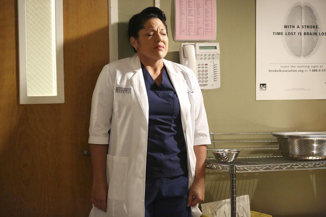 Alles, was Callie (Sarah Ramirez) wichtig ist, scheint auseinander zu fallen ... - Bildquelle: ABC Studios