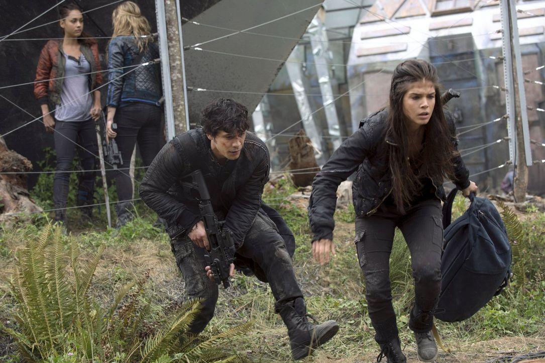 Clarke (Eliza Taylor, 2.v.l.), Bellamy (Bob Morley, 2.v.r.) und Octavia (Marie Avgeropoulos, r.) können sich auf die Hilfe von Raven (Lindsey Morgan... - Bildquelle: 2014 Warner Brothers