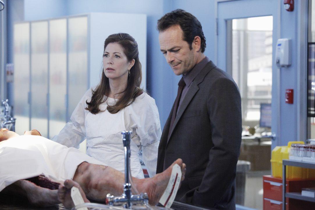 Dr. Megan Hunt (Dana Delany, l.) stellt fest, dass der Tote mit Tollwut infiziert war. Diese Erkenntnis ruft Dr. Charles Stafford (Luke Perry, r.) a... - Bildquelle: ABC Studios