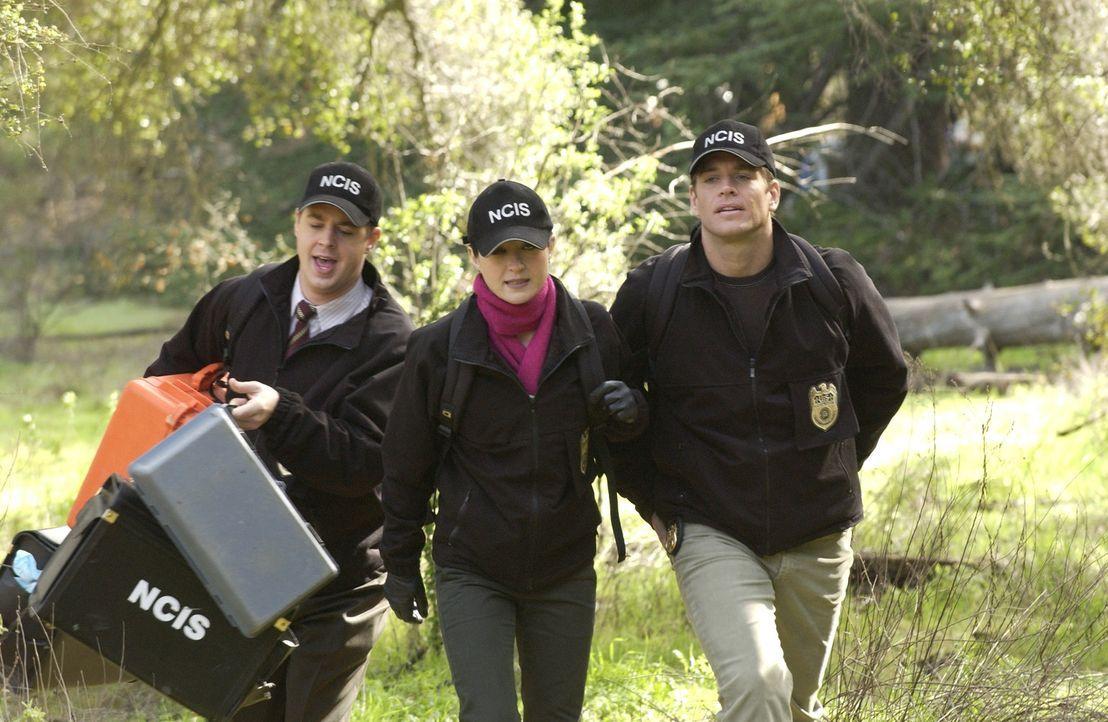 Während eines Camping Ausfluges mit seiner Frau und seinem besten Freund stürzt ein Marine von einem Cliff und nimmt dabei seine eigene Ermordung... - Bildquelle: CBS Television
