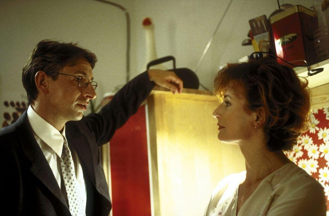 Über die Scheidung von seiner Frau Ellen (Sylvia Haider, r.) kommt Dr. Volker Endress (Ingolf Lück, l.) nicht hinweg. Nach wie vor will er seine Fra... - Bildquelle: Leslie Haslam ProSieben