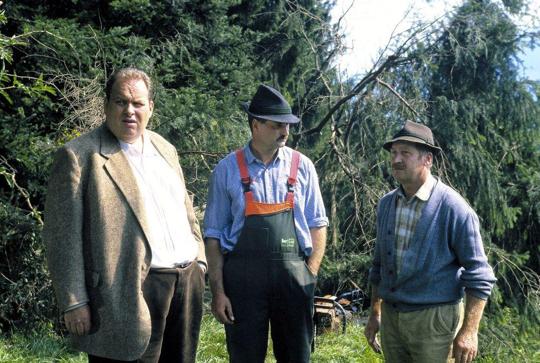 Benno (Ottfried Fischer, l.) begibt sich mit den beiden Forstarbeitern (Josef Waldher, M. und Hans Kandlinger, r.) auf Spurensuche. - Bildquelle: Magdalena Mate Sat.1