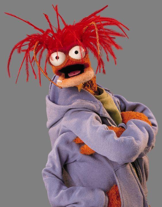 (1. Staffel) - Teil der Muppets-Truppe: Pepe - Bildquelle: Jay David Buchsbaum ABC Studios